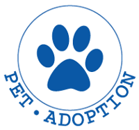 Responsive web design pet adoption 00056